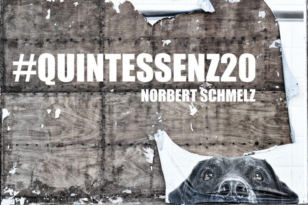 Plakat Jubiläumsausstellung, Quintessenz20, Rathaus Würzburg, Polaroid Image Transfer, Labrador, Hund, 20 Jahre Schmelz Fotodesign