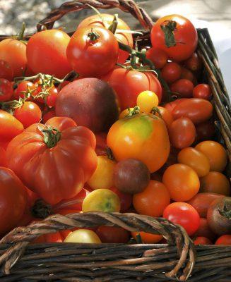 Schmelz Fotodesign, Tomaten rot, Foodfotografie, Werbefotografie, Businessfotografie