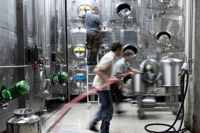 Beim Abfüllen im Weinkeller, Weingut Wischer, Nordheim am Main, Weinfotografie, Winzer bei der Arbeit, Schmelz Fotodesign, Weinreportage
